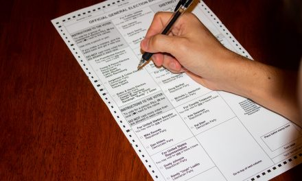 The Low Down on Voter Suppression