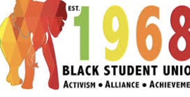 Black Student Union: DEI Organization Spotlight